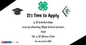 4-H Scholarship flyer image