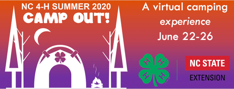 Virtual Camp Out banner