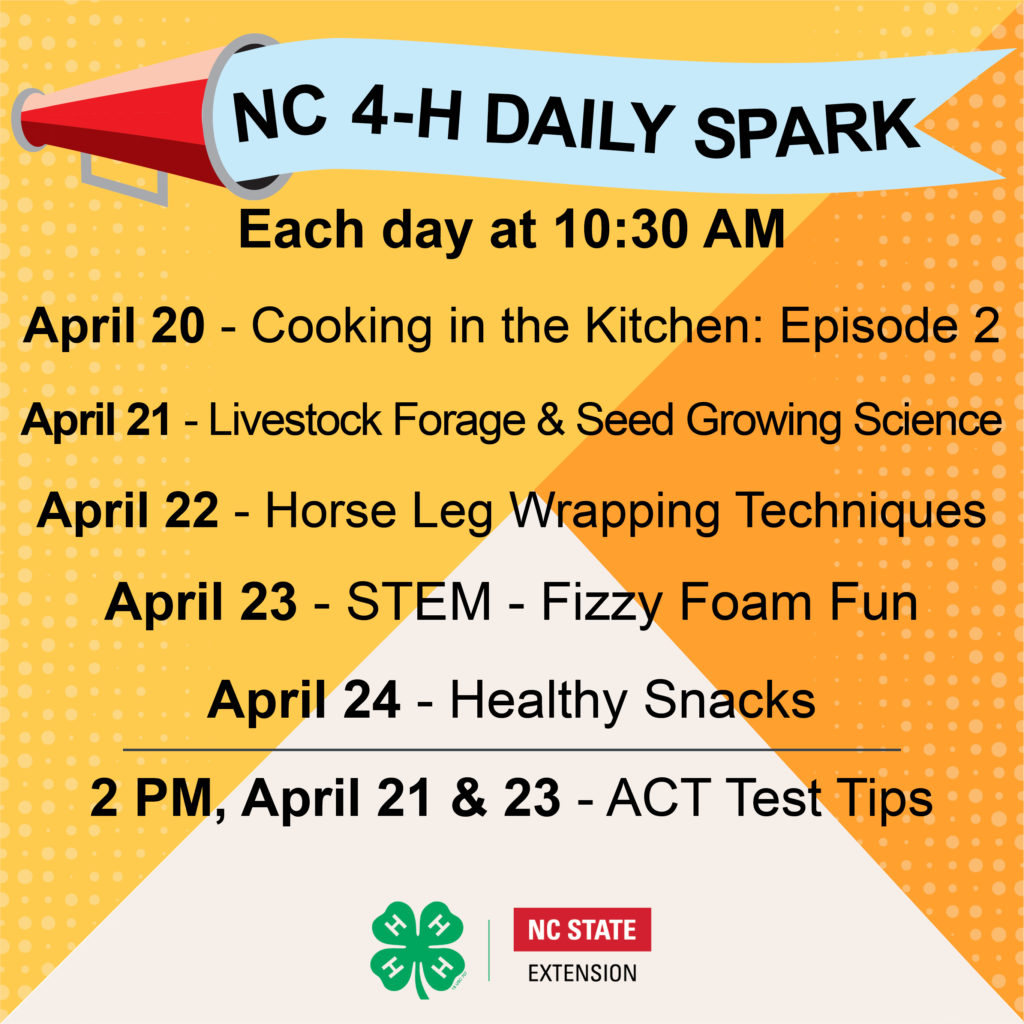 NC 4-H Daily Spark Week 5