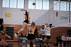 Young female in yellow and black jersey is spiking volley ball to females in white jerseys.