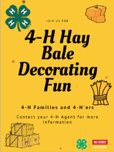 HayBaleDecoratingFun
