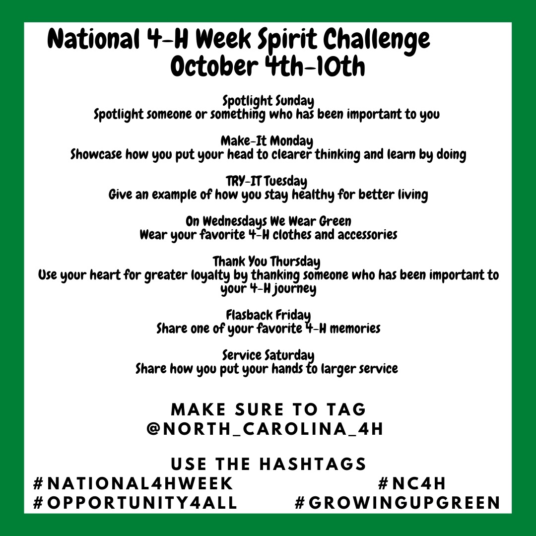 Graphic of Spirit Challenges for National 4-H Week.