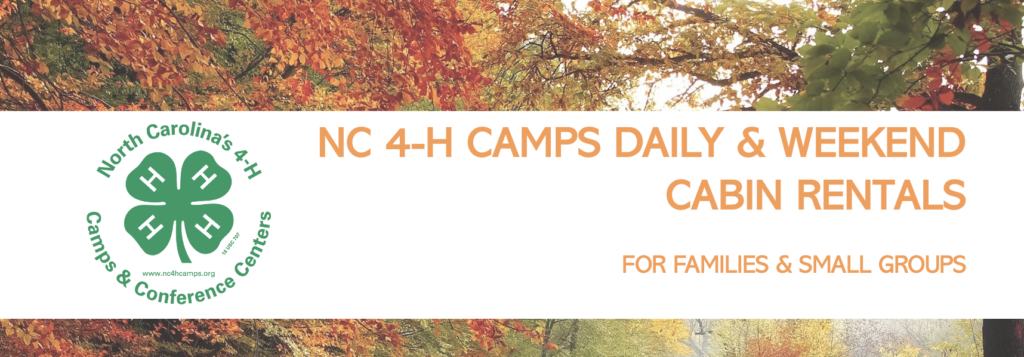 4-H Camps banner