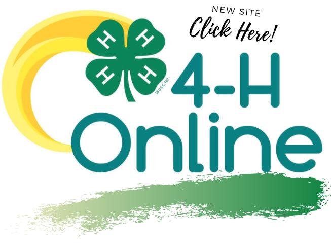4-HOnline2.0 Logo