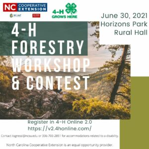 forestry flyer